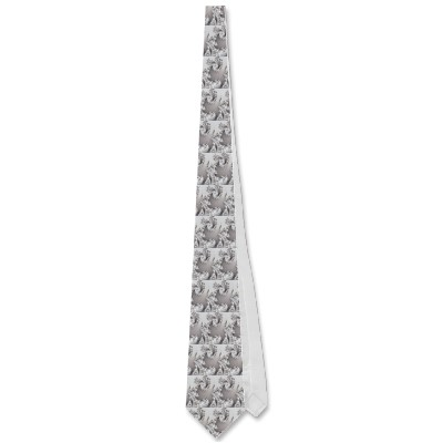 Silver Double Spiral Tie